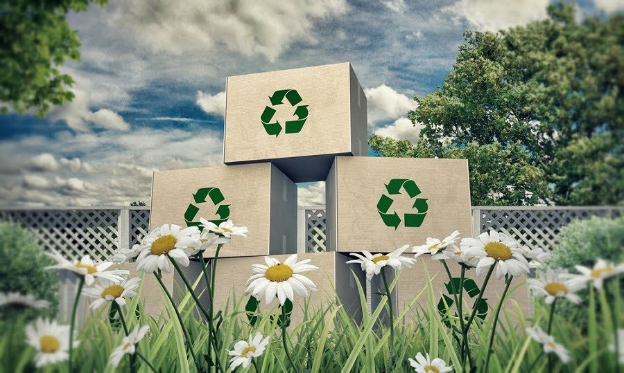 environment carton