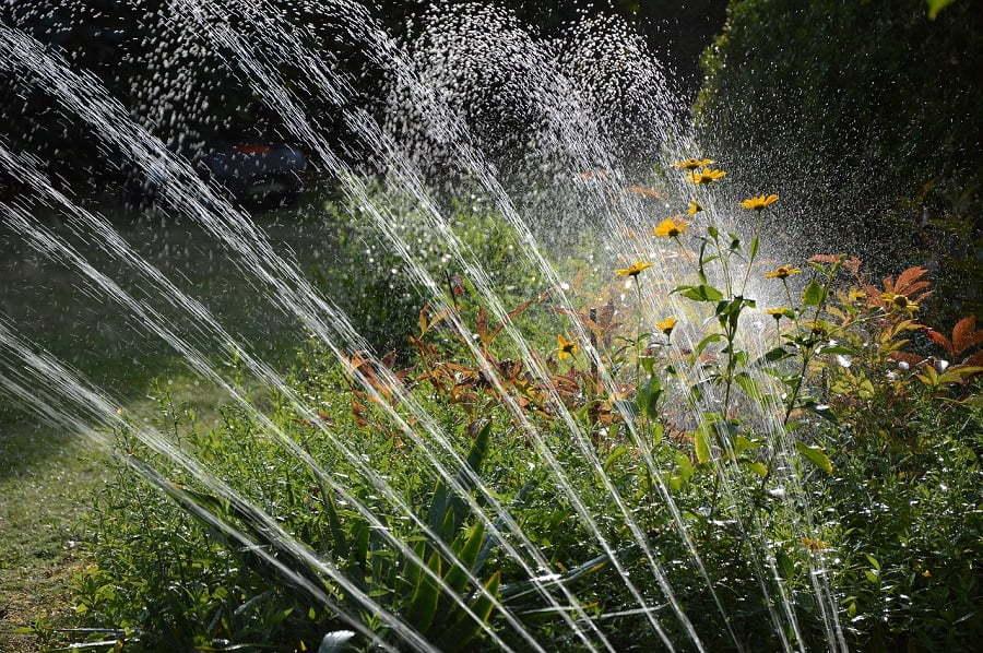 watering sprinklers